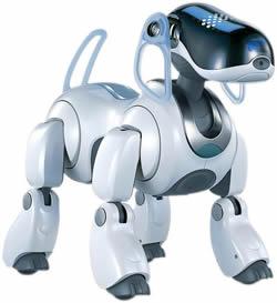 富山 ロボット