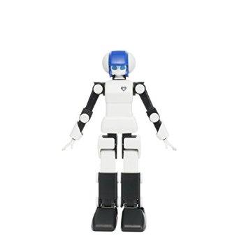 ロボットアイドル