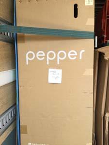 ペッパー 必ず立てた状態 送付