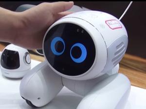 ペットロボット 正常な反応