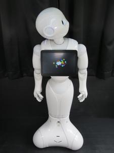 softbank ソフトバンク ペッパー 中古 Pepper デベロッパー先行モデル